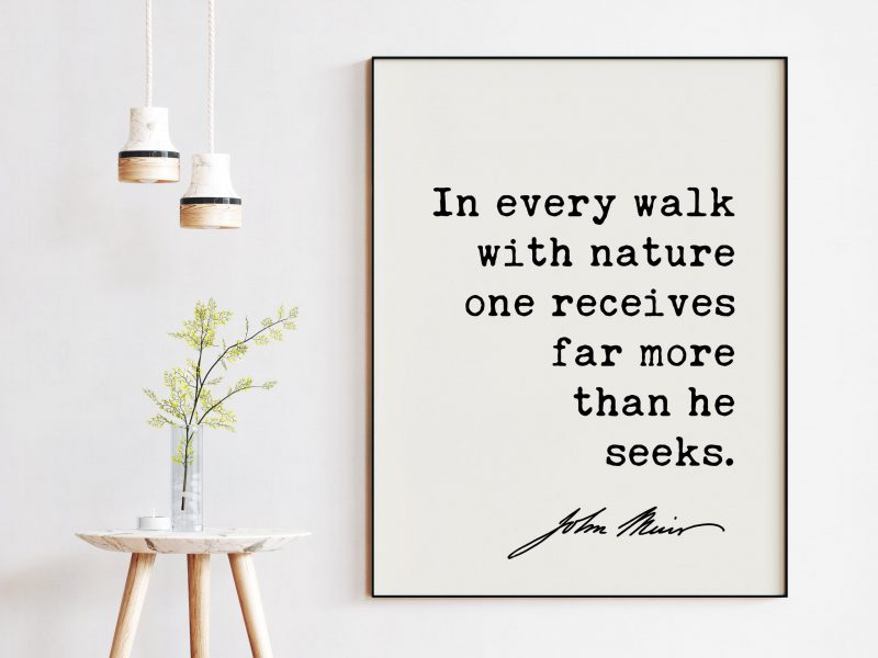 In every walk with Nature one receives far more than he seeks. - John Muir Quote Print, Nature Environmentalist Quote,  John Muir Quotes